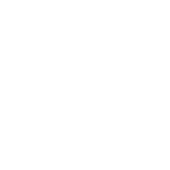 http://www.bramptonwillows.co.uk/wp-content/uploads/2019/12/blogo.png